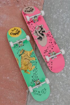 Duo Skateboards