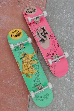 Duo Skateboards