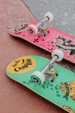 Duo Skates roues